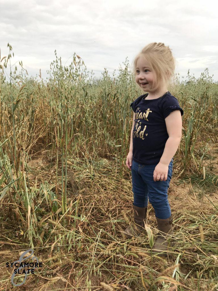 Evie in hay field