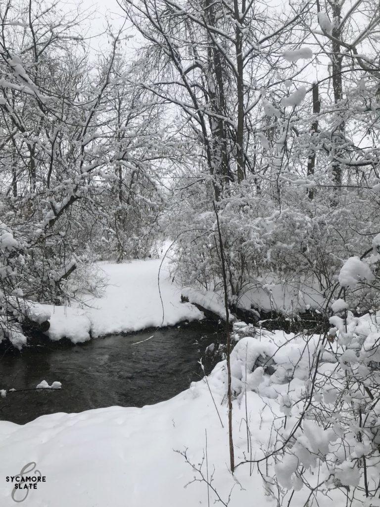 path through the stream