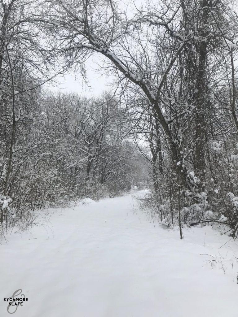 large path