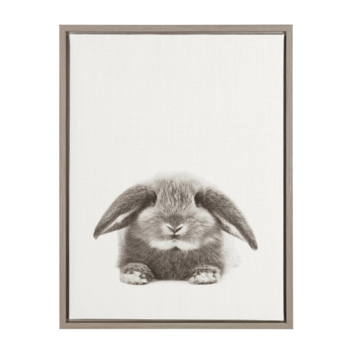 bunny framed canvas